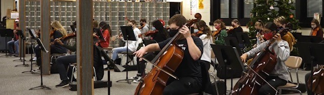 Newfield Chamber Orchestra Spreads Holiday Cheer!